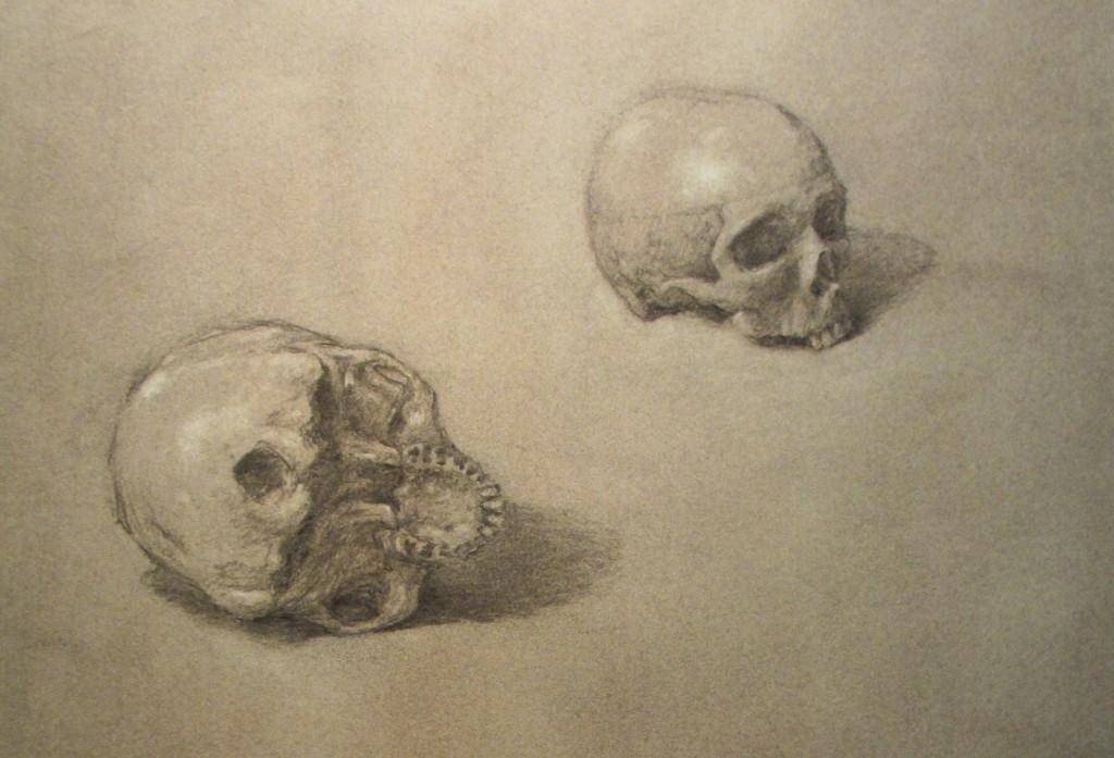 David M. Stallings: Skulls (charcoal drawing)